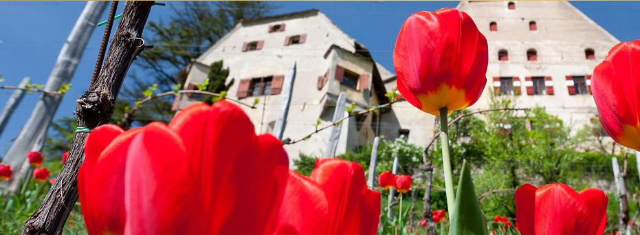 Die schönsten Schlosshotels in Südtirol